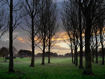 Free Golf Course At Dawn Royalty Free Stock Photography - 323447