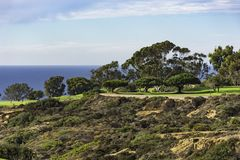 Free Golf Course At Torrey Pines La Jolla California USA Near San Diego Royalty Free Stock Image - 108127826