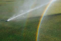 Golf course automatic lawn sprinkler with rainbow. Golf course automatic lawn sprinkler in action with rainbow Royalty Free Stock Photo
