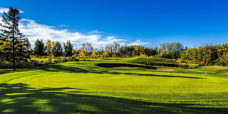 Golf Course in Autumn. The fall colors of autumn surround the greens of the golf course Stock Photos