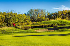 Golf Course in Autumn. The fall colors of autumn surround the greens of the golf course Stock Image