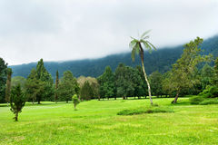 Golf course at Bali Stock Image