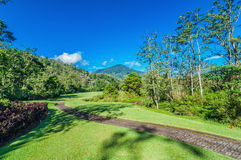 Golf Course in Bali Stock Photography