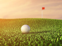 Golf course. Golf ball on grass , Golf tournament concept Stock Images