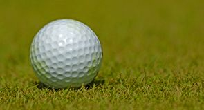 Golf course with balls stock image