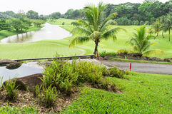 Golf Course. Beautiful golf course with its manicured green Royalty Free Stock Photo