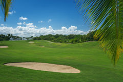 Golf course. Beautiful landscape of a golf court with palm trees Stock Photos