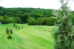 Golf Course Royalty Free Stock Photos