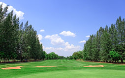 Golf course and blue sky Stock Image
