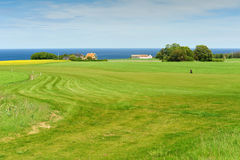 Golf course on Bornholm island Royalty Free Stock Photography