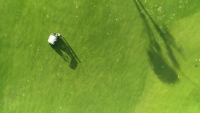 Golf course and champion player playing game in luxury tropical resort, aerial view. Dominican Republic stock footage