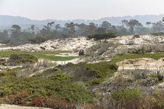 Golf course coast california. Golf course with dunes on coastal highway, california Stock Images