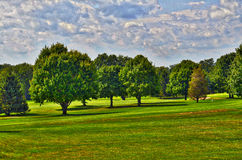 Golf course. Country club golf course trees ground green meadow blue sky Stock Photo