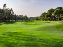 Golf course in the countryside Royalty Free Stock Photo