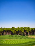 Golf course in the countryside Stock Image