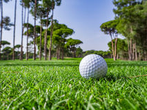 Golf course in the countryside Royalty Free Stock Photos