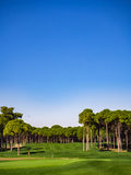 Golf course in the countryside Royalty Free Stock Image