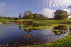 Golf course course park. Pond by trees and blue sky Royalty Free Stock Image