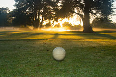 Golf course at dawn. Royalty Free Stock Photography