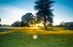 Golf course at dawn. Royalty Free Stock Photos