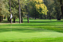 Golf course detail. Golf green with the flag Royalty Free Stock Photos