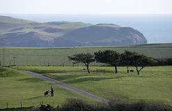 Golf course in Devon England UK Royalty Free Stock Photo