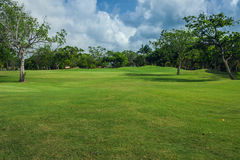Golf course in Dominican republic. field of grass Stock Photography
