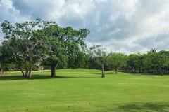 Golf course in Dominican republic. field of grass Stock Photo
