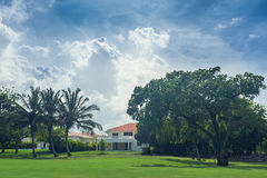 Golf course in Dominican republic. field of grass Stock Image