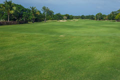 Golf course in Dominican republic. field of grass Royalty Free Stock Image