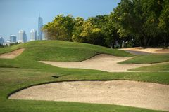The golf course in dubai stock images