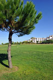 The golf course, El Rompido, Andalusia, Spain Royalty Free Stock Photos