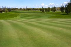 Golf course. Extensive golf course with green grass Royalty Free Stock Images