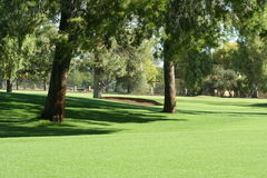 Golf course fairway. Scene with lots of trees and sand trap at Arizona resort Royalty Free Stock Photo