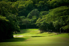 Golf course fairway at tropical resort. Image of a heavily forrested golf fairway at a tropical resort Royalty Free Stock Photos