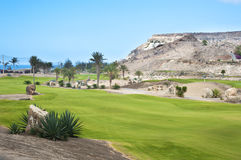 Golf course fairway at tropical resort. Beautiful golf course fairway at a tropical resort, Gran Canaria, Canary Islands, Spain Royalty Free Stock Images