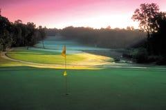 Golf Course. Field Stock Photos