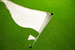 Golf course and flag on the golf court Stock Image