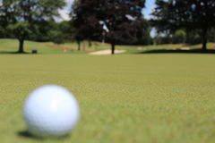 Golf course. Flag hole in golf course green Royalty Free Stock Image