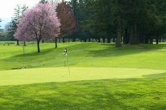 Golf Course Golfing Canada. Springtime view of a British Columbia golf course Stock Photo