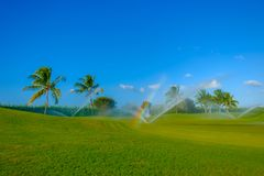 Grand Cayman-Golf Course 6 royalty free stock images
