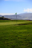 Golf course green Stock Images