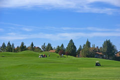 Golf course, green fairway Royalty Free Stock Photography
