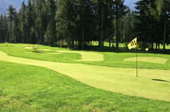 Golf course green and flag Royalty Free Stock Image