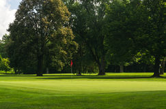 Golf course green. Stock Photography