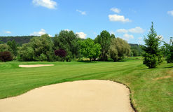 Golf course, green grass, large sand pit, trees Stock Photography