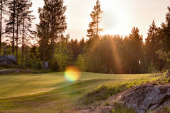 Golf course green in Nordic forest landscape Royalty Free Stock Images