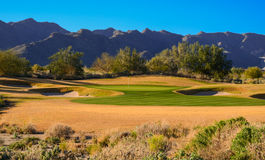Golf Course Green & Sand Traps in late afternoon sun Royalty Free Stock Image