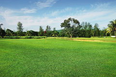 Golf Course. With the green on a sunny day in summer Stock Photography