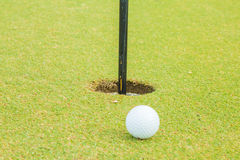 Golf course and green tree Royalty Free Stock Photography
